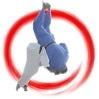 Judo Calendar